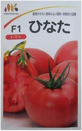 トマト種 F1ひなた  みかど協和の大玉トマト品種です。(大袋)