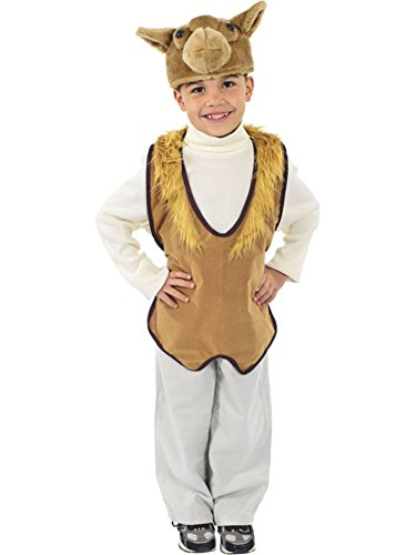 [Fun Express 4534FE Childs Camel Nativity Set] (Nativity Costumes Set)