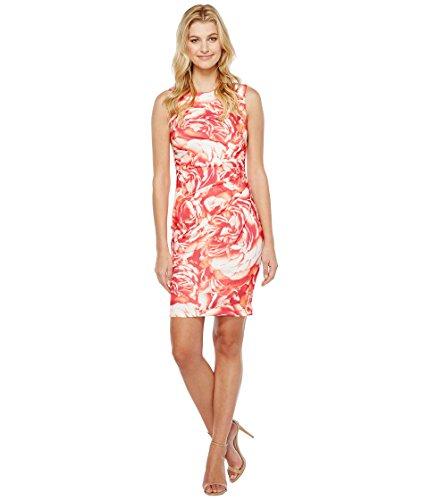 厳ジョットディボンドン未知の[カルバンクライン] Calvin Klein レディース Blurred Floral Starburst Sheath Dress ドレス [並行輸入品]