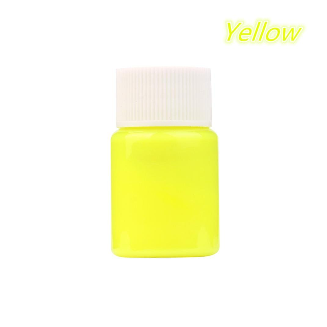 Glow in the Dark Paint, Transer DIY Acrylic Luminous Paint Bright Pigment Party Decoration 20g (E)
