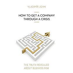 How to get a company through a crisis (The truth revealed about business risk)