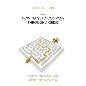 How to get a company through a crisis (The truth revealed about business risk) Hörbuch