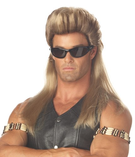 Dog With Mullet (California Costumes Men's Bail Enforcer Wig,Multi,One)
