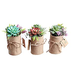 Indoor Flower Pots – Fake Succulent Plants for Bathroom & Office Décor – 3-Piece Set of Herb Garden Artificial Flowers – Lovely Gift Set Wrapping - No Tending & Practical for All Rooms – Eco-Friendly 50