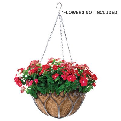 Panacea Products Corp-Import 88574 Savanna Hanging Plant Basket, Antique Iron, 14-In. - Quantity 6 by Panacea Products