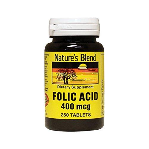 Folic Acid 400 mcg 400 mcg 250 Tabs