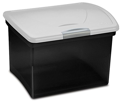 STERILITE Portable Black File Box with Hinged Lid (Hinged Boxes File)