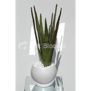 Artificial Aloe Vera Plant Realistic Vase Floral Arrangement 97