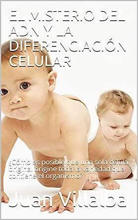 EL MISTERIO DEL ADN Y LA DIFERENCIACIÓN CELULAR: ¿Cómo es ...