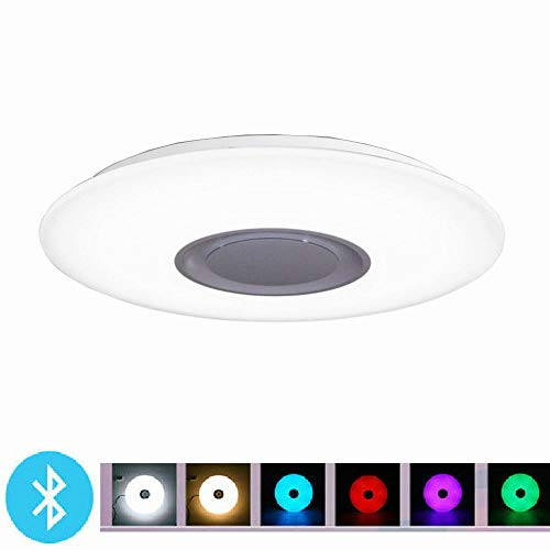 24W Dimmable LED Flush Mount Ceiling Light with Bluetooth Speaker, Controllable Full Color Bluetooth Music Light (Large)