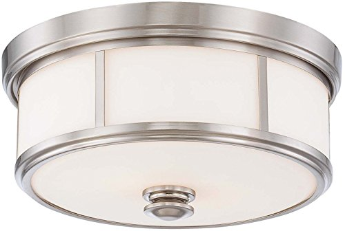 Minka Lavery Flush Mount Ceiling Light 4365-84, Harbour Point Glass Fixture, 2 Light, Nickel