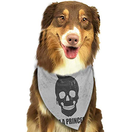 Creative Family pet Scarf I am a Princess Skull with a Crown Skeleton Halloween Theme Grunge Look W27.5 xL12 Scarf for Small and Medium Dogs and Cats ()