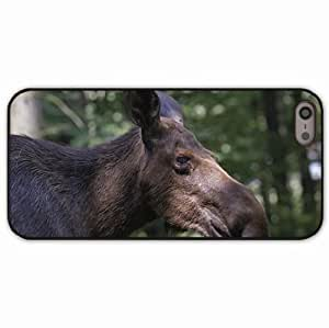 iPhone 5 5S Black Hardshell Case elk forest reflections profile Desin Images Protector Back Cover