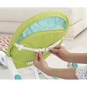 Fisher Price Newborn to Toddler Rocker