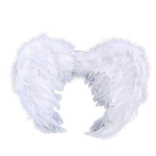 Angel Wings 80 x 60 (A) - 9