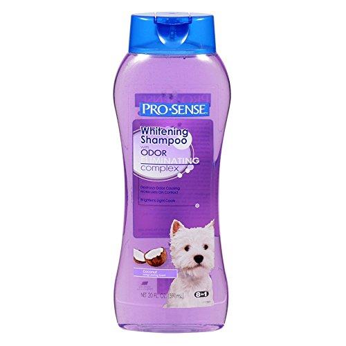 Pro-Sense Odor Eliminating Whitening Shampoo, Coconut Scent, 20-Ounce (P-82724)