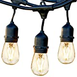 Brightech Ambience Pro - Waterproof LED Outdoor String Lights - Hanging, Dimmable 2W Vintage Edison Bulbs - 24 Ft Commercial Grade Patio Lights Create Cafe Ambience in Your Backyard