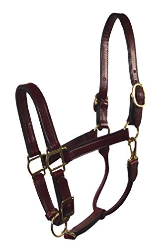 Hamilton 3/4-Inch Adjustable Leather Deluxe Halter with Snap, Weanling Size, Fits 200 to 300-Pound, Burgundy