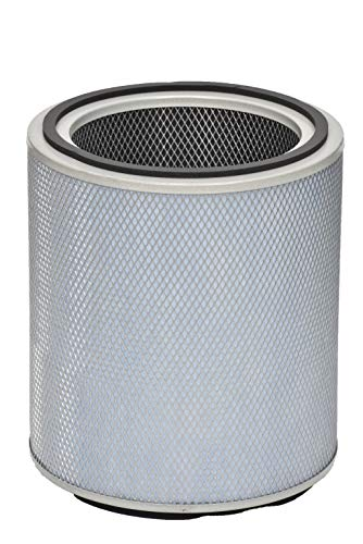 Air Cleaner Allergy Machine - Austin Air FR405B Allergy Machine Standard Replacement Filter, White