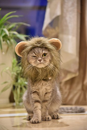 MEWTOGO Lion Mane - Realistic and Funny Lion Mane for Cats- Complementary Lion Mane Hat for Dog Cat Costumes,Lion Mane Costume for Cat and Dog(M)]()