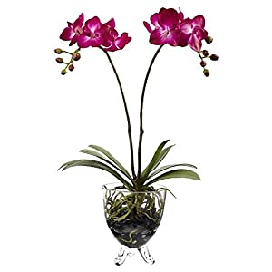 Nearly Natural 4831 Double Phalaenopsis Orchid Elegance Arrangement 52
