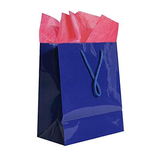 JAM Paper Colorful Gift Bag Assortment - 2 Large Glossy Bags (10