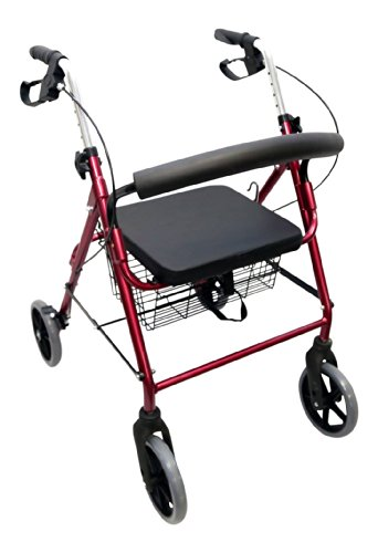 Danny's World Rollator with 8 inch Wheels, Burgundy by Danny's World