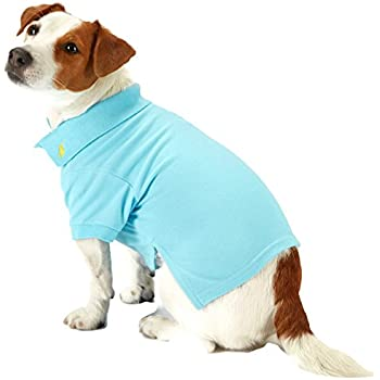 afeb2ca40d2b1 Amazon.com : Ralph Lauren Dog Puppy Pet Polo Shirt Designer Clothing ...