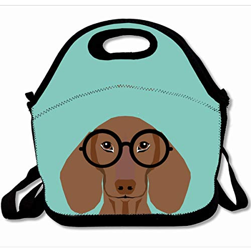 (Ahawoso Reusable Insulated Lunch Tote Bag Cute Doxie With Hipster Fashion Glasses Daschund 10X11 Zippered Neoprene School Picnic Gourmet Lunchbox)