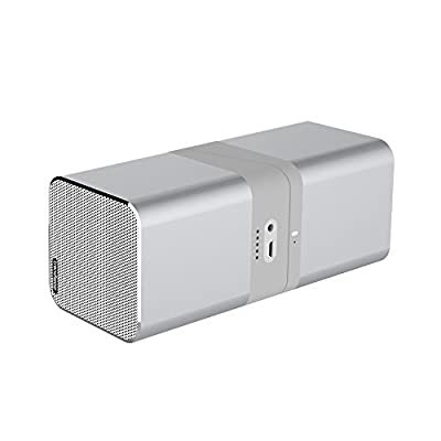 Trendwoo Twins Bluetooth Wireless Speaker, Support 2.0 Left and Right Stereo Sound Surround ,with Built in Microphone Hands-free Music Player (Silver)