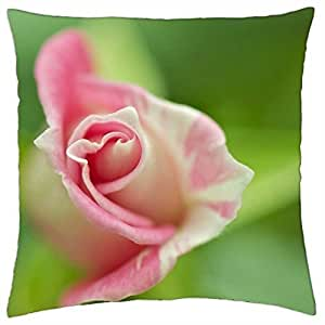 soft nature nice rose pastel one pink beauty - Throw Pillow Cover Case (18