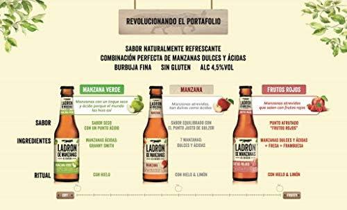 Ladrón de Manzanas Cider Lata, 330ml