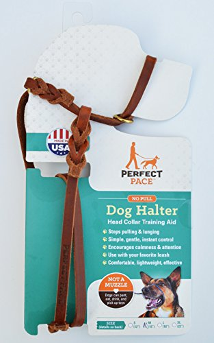 Halti Halter - Perfect Pace Leather Halter (Large-Std, Tan)