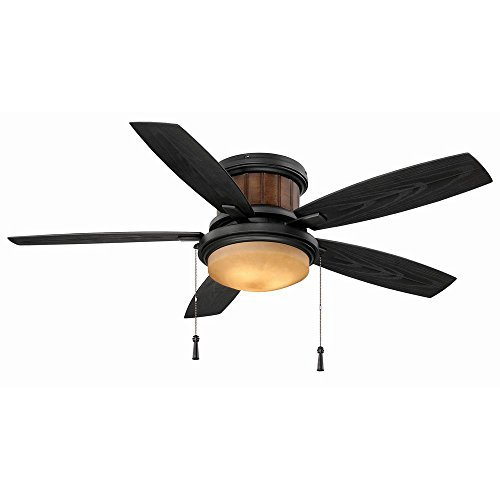 (Hampton Bay Roanoke 48 in. LED Indoor/Outdoor Natural Iron Ceiling Fan with Light Kit)