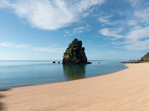 Home Comforts Canvas Print Island Golden Sand Beach ABEL Tasman Idyllic Vivid Imagery Stretched Canvas 32 x 24