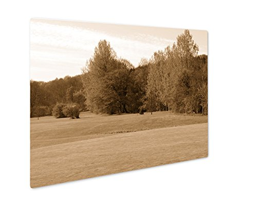 Ashley Giclee Golf Course, Wall Art Photo Print On Metal Panel, Sepia, 16x20, Floating Frame, AG5583937