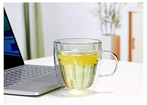 Large Premium Heat Resisting Glass Cup or Mug (Single Cup - 1 Cup) - 500 ML or 16.9 OZ (Ounces) - Double Walled Insulated Glass - Dishwasher & Microwave Safe - Clear, Unique & Insulated with Handle by B&Z Glass (Image #8)