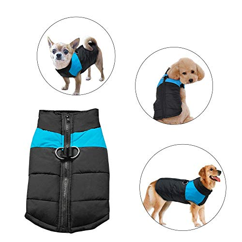 Didog Cold Weather Dog Warm Vest Jacket Coat,Pet Winter Clothes for Small Medium Large Dogs,8, Blue,M Size ()