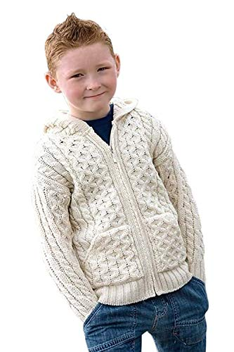 100% Irish Merino Wool Little Boys Hooded Zip Sweater with Pockets by West End -