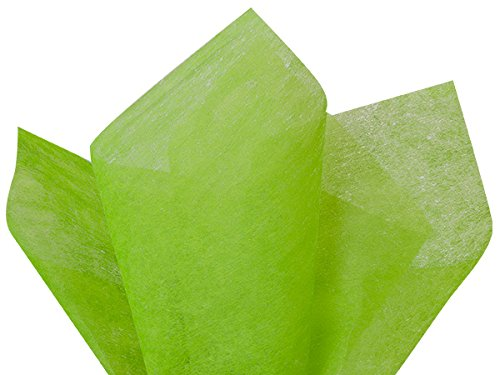 Pack Of 100, Solid Apple Green Non-Woven Fiber Tissue Sheets 20'' x 26'' Reusable & 100% Polyester by Generic