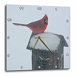 3dRose dpp_12336_1 Wall Clock, Red Bird on a Birdhouse, 10 by 10-Inch