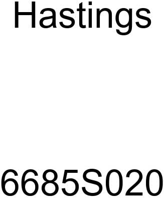 Hastings 6685S020 Single Cylinder Piston Ring Set