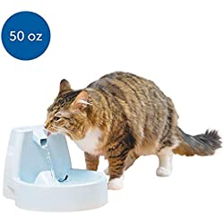 PetSafe Drinkwell Original Dog and Cat Water Fountain, Automatic Drinking Fountain for Pets, 50 oz.