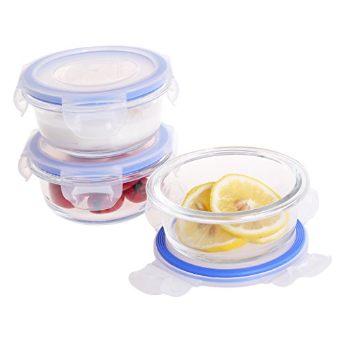 small glass locking containers - 9