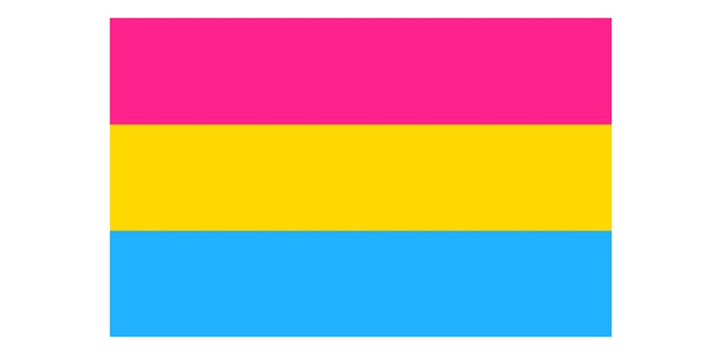 Pansexual gay pride 5ft x 3ft Flag Top Brand