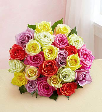 1800Flowers Assorted Roses Flower Bouquet (24 Flowers)