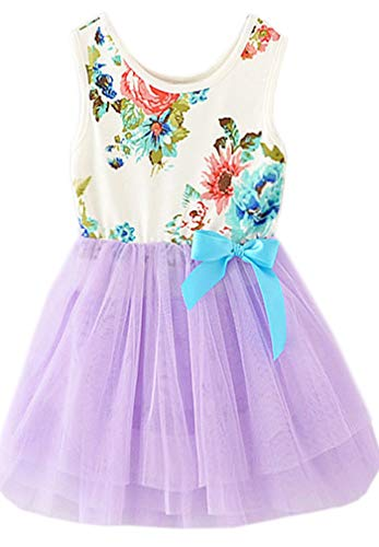 Niyage Little Girls Sleeveless Floral Princess Dress Tulle Tutu Sundress 3T Purple ()