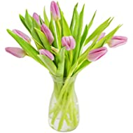 KaBloom 10 Fresh Cut Pink Tulips from Holland with Vase