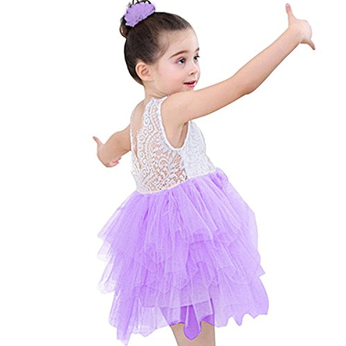Miss Bei Lace Back Flower Girl Dress,Kids Cute Backless Dress Toddler Party Tulle Tutu Dresses for Baby Girls (Purple, 1-2 Years)
