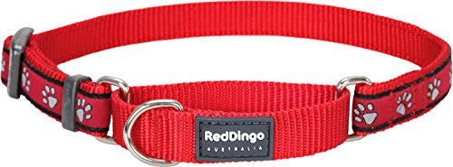 Red Dingo Martingale Collar, 41-62 cm x 25 mm, Paw Prints Red